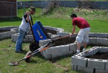 A Detailed Overview about How Often to Fertilize Lawn and More Info