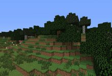 What is Seagrass in Minecraft? And How to Get Seagrass in Minecraft: A Definitive Guide